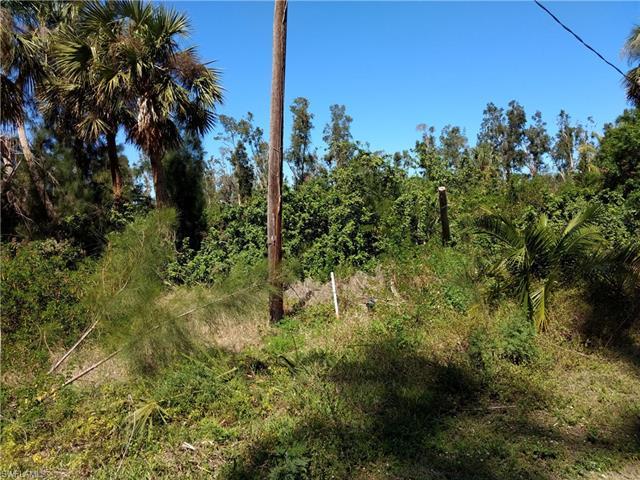 Photo of Estero Springs   in Estero, FL 33928 MLS 218014485