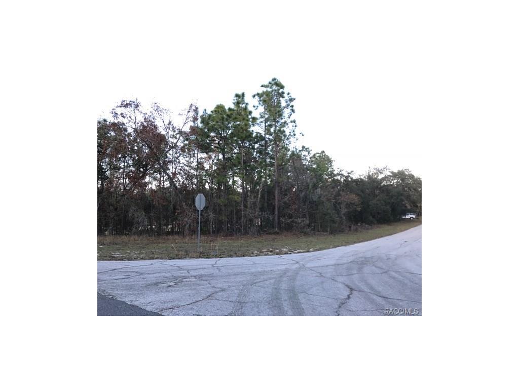 Photo of 981 W Cadima Place, Citrus Springs, FL 34434