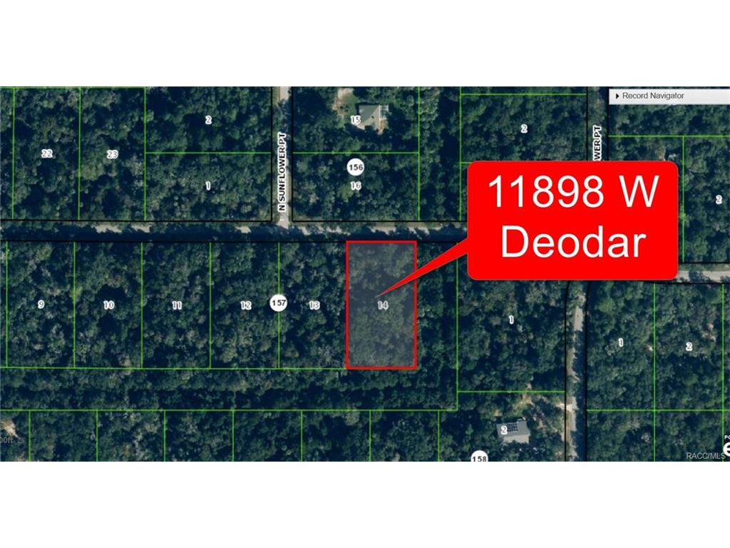 Property ID 353574