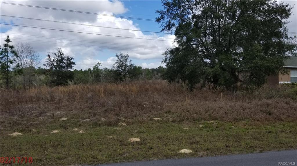 Photo of 2757 W Redgate Drive, Citrus Springs, FL 34433
