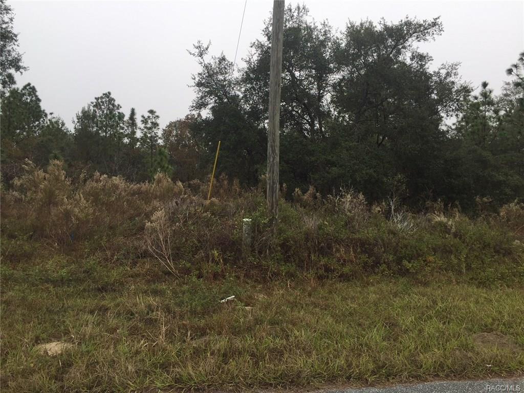 Photo of 2145 W Riley Drive, Citrus Springs, FL 34434