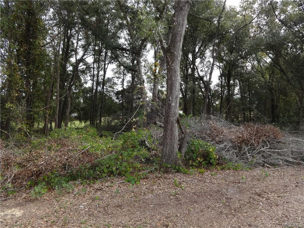Photo of 2109 N Picnic Point, Hernando, FL 34442