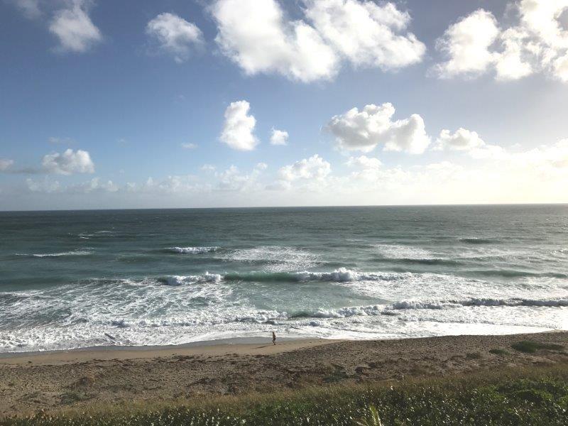 Oceana South II