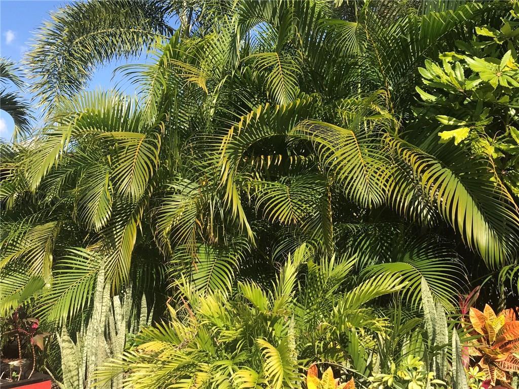 25 NW Boundary, Port Saint Lucie, FL, 34986