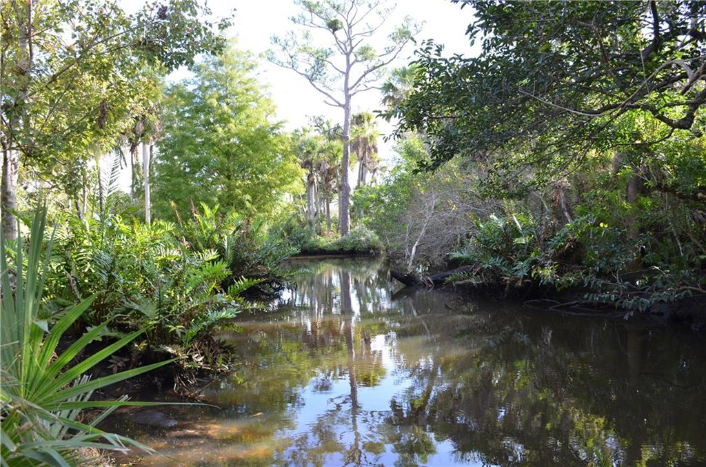 ORCHID BAY PALM CITY FLORIDA