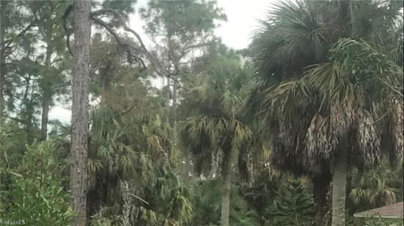 X 1170 X SW 17th, Naples, FL, 34117