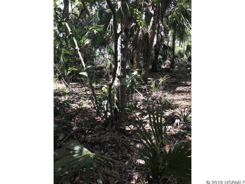 0 Juanita, New Smyrna Beach, FL, 32168