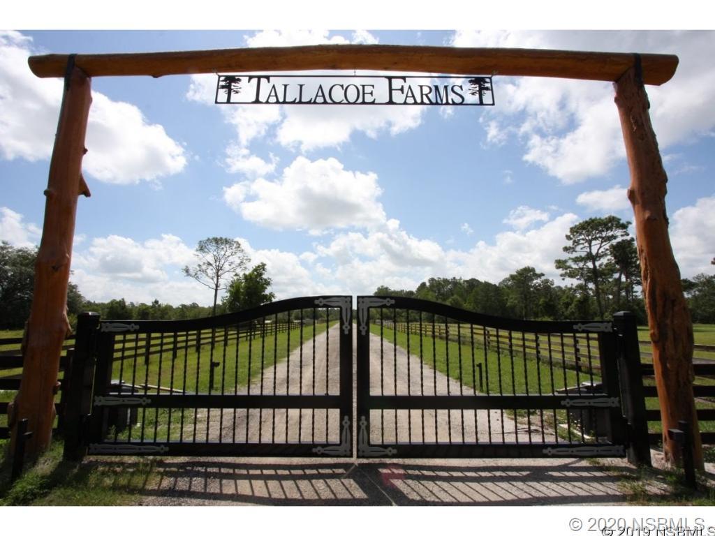 1100 Tallacoe, New Smyrna Beach, FL, 32168