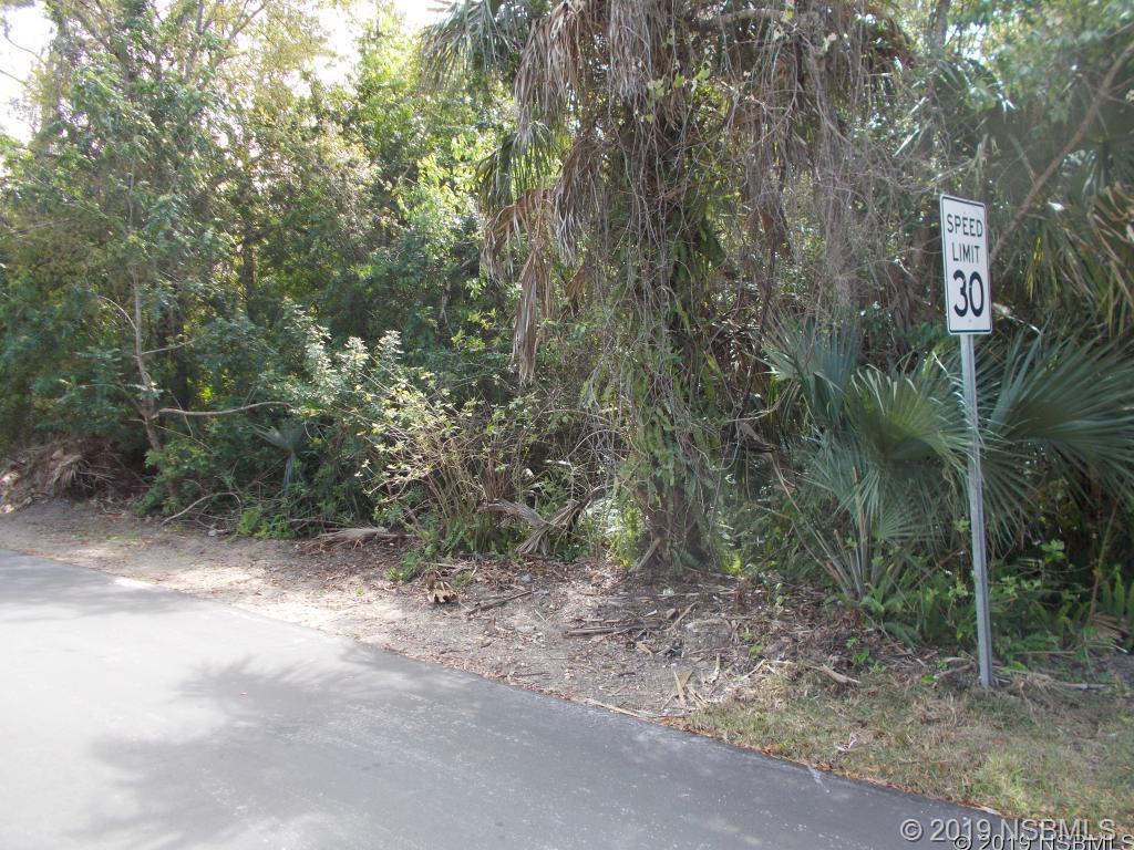 0 Willard, New Smyrna Beach, FL, 32168