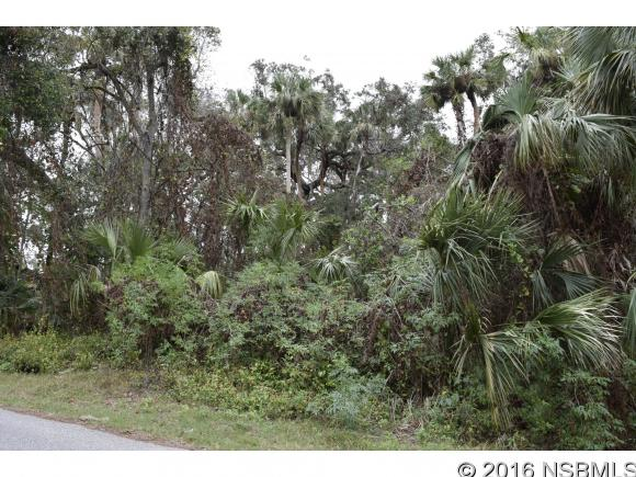 0 Pine Tree, Edgewater, FL, 32132