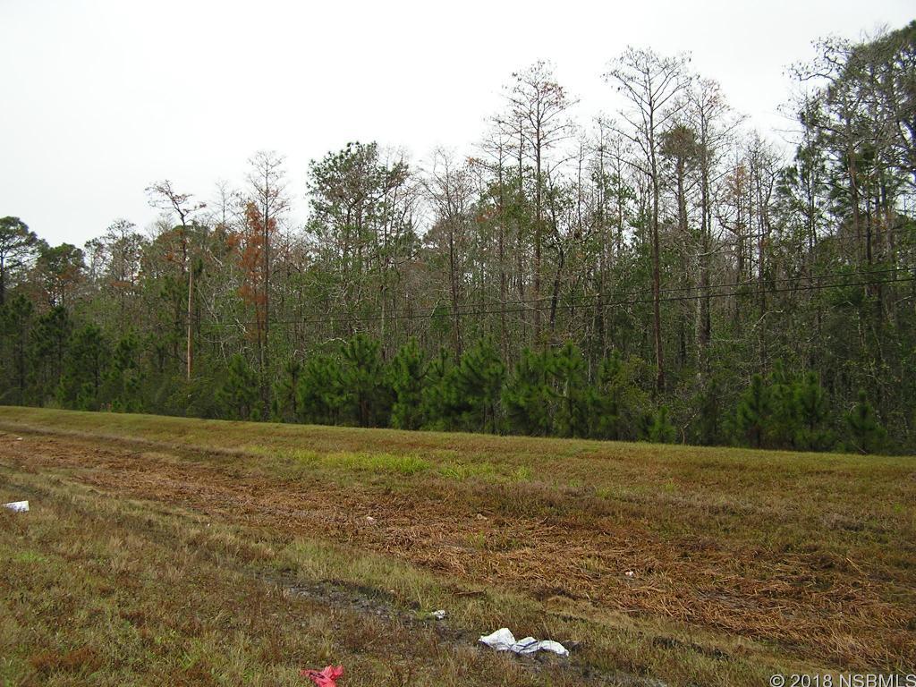 3491 State, New Smyrna Beach, FL, 32168