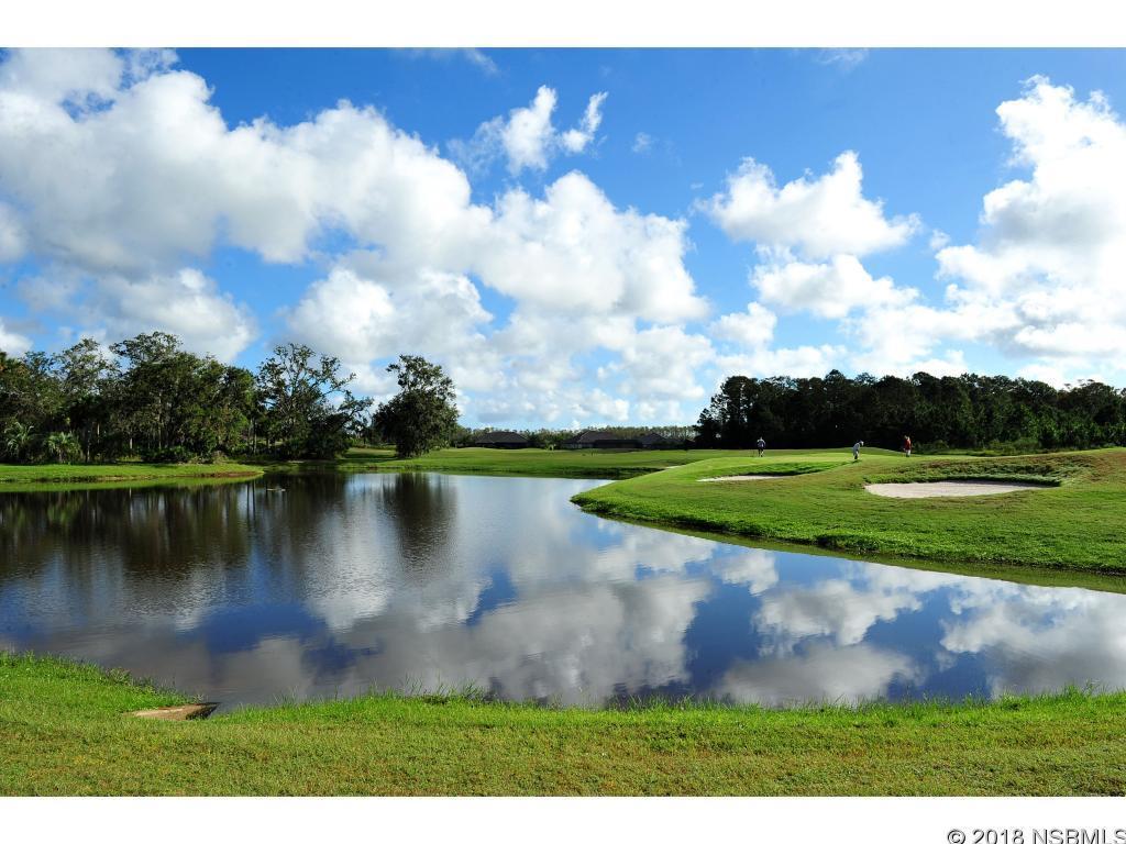 3614 Tresto, New Smyrna Beach, FL, 32168