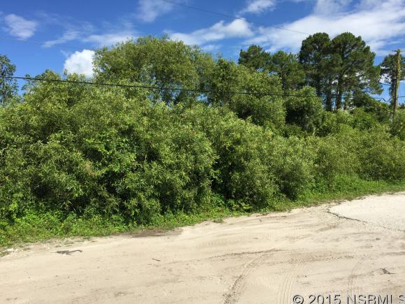 669 Rasley, New Smyrna Beach, FL, 32168