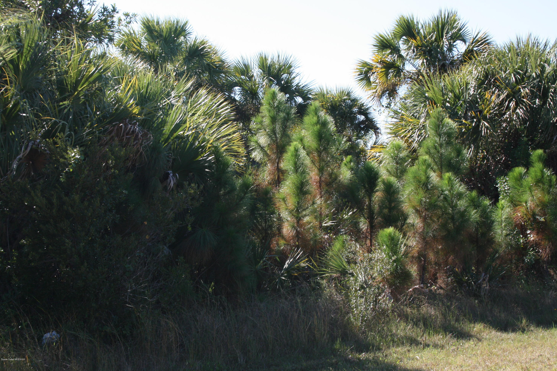 Photo of 769 Treasure Cove Street, Palm Bay, FL 32908