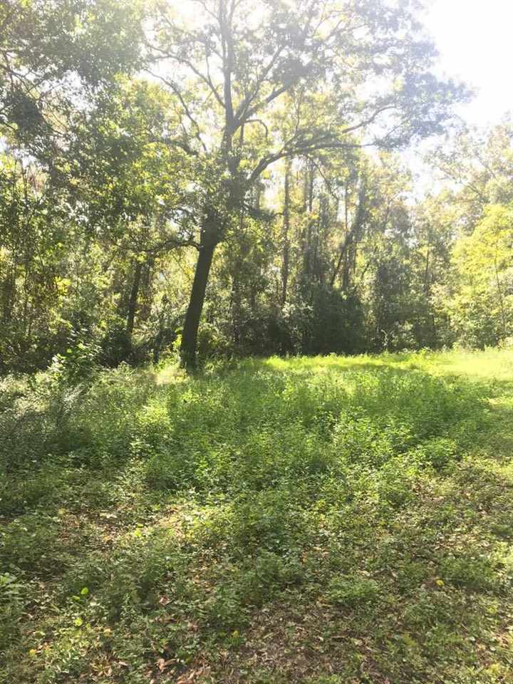 Photo of 1141 Doves Hollow #no, Tallahassee, FL 32304