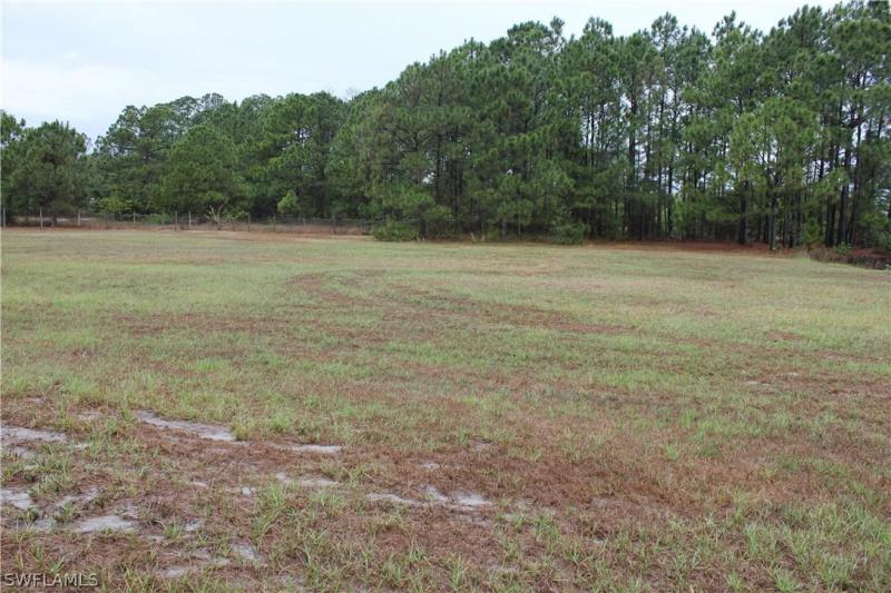 Hendry county property search