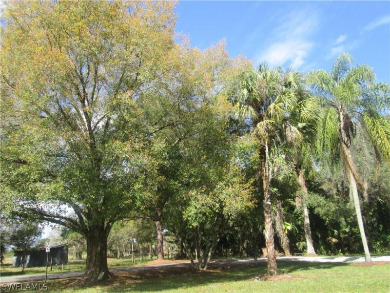2081  Linwood AVE Alva, FL 33920- MLS#219036536 Image 22