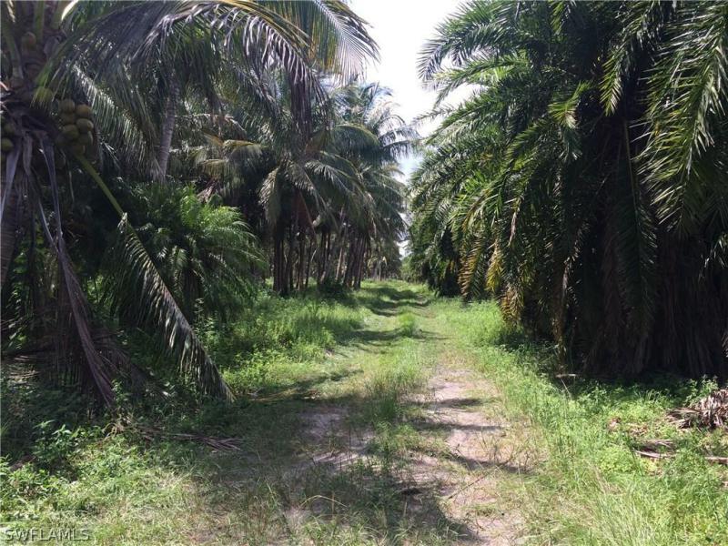 Access Und , Bokeelia, FL, 33922