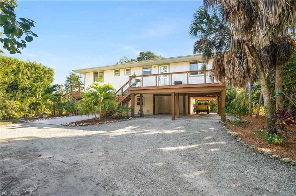 Palm, Sanibel, Florida