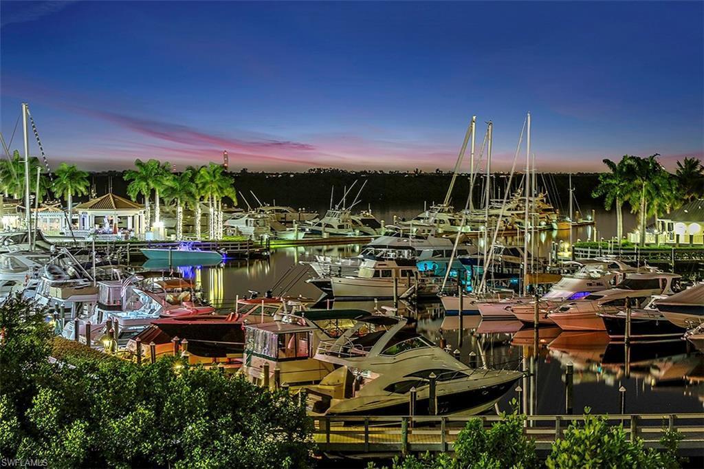Silver King, Cape Coral, Florida