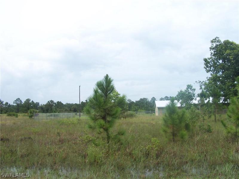 1113 E Elegans, Lehigh Acres, FL, 33974