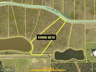 22842  Yellow Button,  ALVA, FL