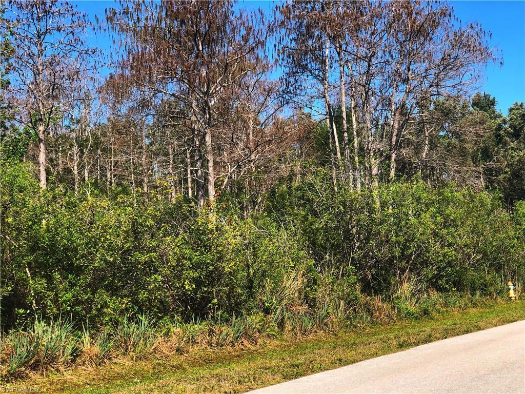 24410  Melaine,  Bonita Springs, FL