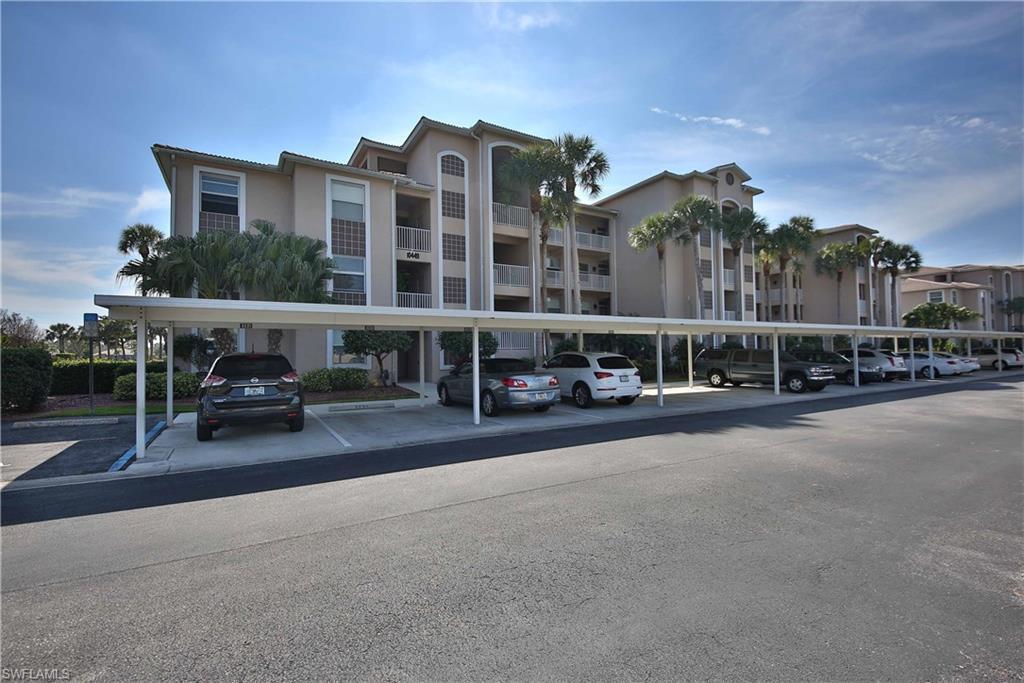 10449  Washingtonia Palm,  Fort Myers, FL