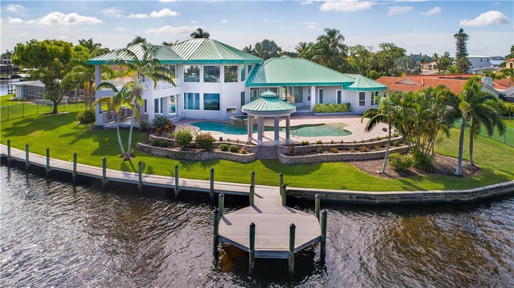 Dolphin, Cape Coral, Florida