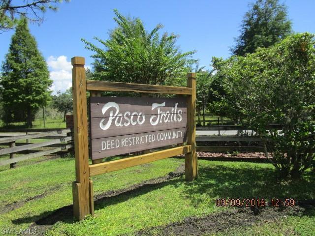 12565 Pasco Trails Blvd, Spring Hill, Fl 34610