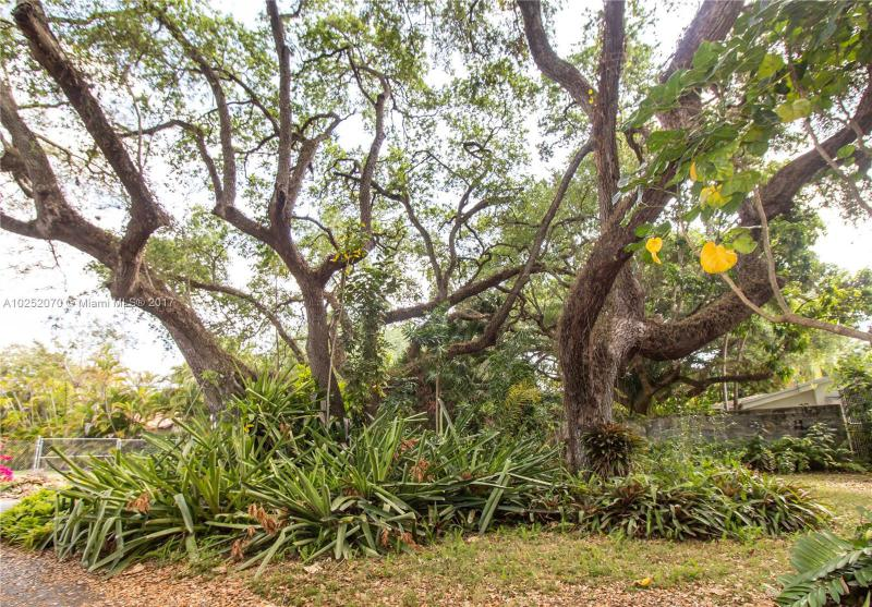 For Sale at  3860   Crawford Ave Coconut Grove  FL 33133 - Coco Grove - 2 bedroom 1 bath A10252070_3