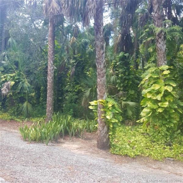 1129 Wood Dr., LABELLE, FL, 33935