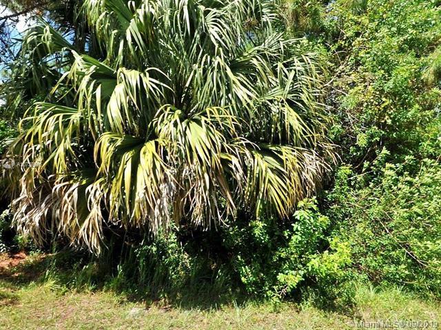 3416 Ellis St, Port St Lucie, FL, 34953