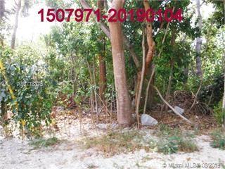 PLANTATION Vaca Land, ISLAMORADA, FL, 33036