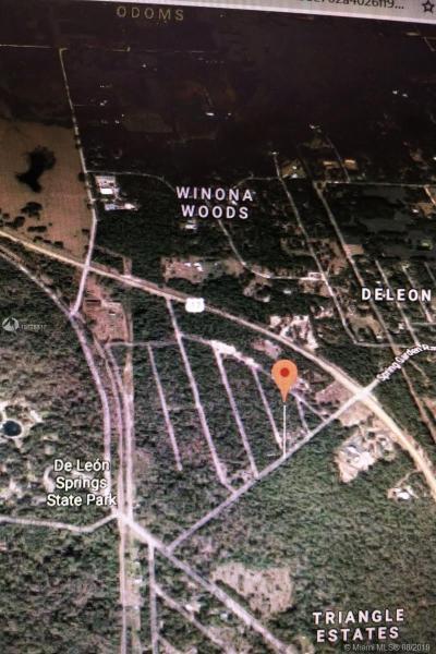 Spring Gar W DeLeon Springs, DE LEON SPRINGS, FL, 32130