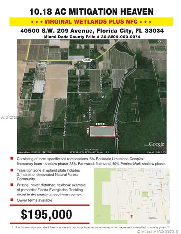 Florida City Commercial A10127887