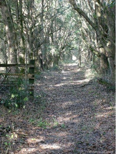 15422 Redbird Road, ARCHER, FL, 32618