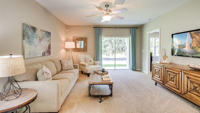 16691 SECRET MEADOW, ODESSA, FL, 33556