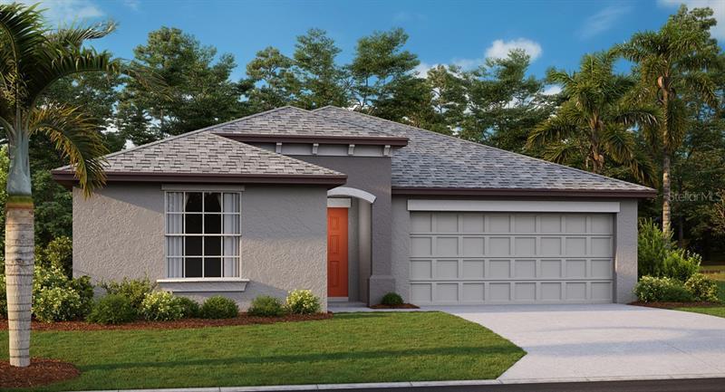 5049 WHITE CHICORY, APOLLO BEACH, FL, 33572