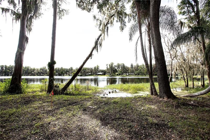 , ODESSA, FL, 33556