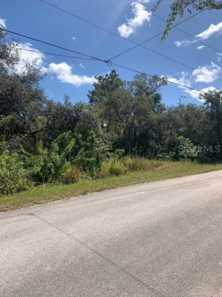 MOUNTAIN, BABSON PARK, FL, 33827