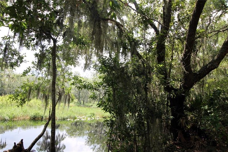 12835 ERYN, CLERMONT, FL, 34711