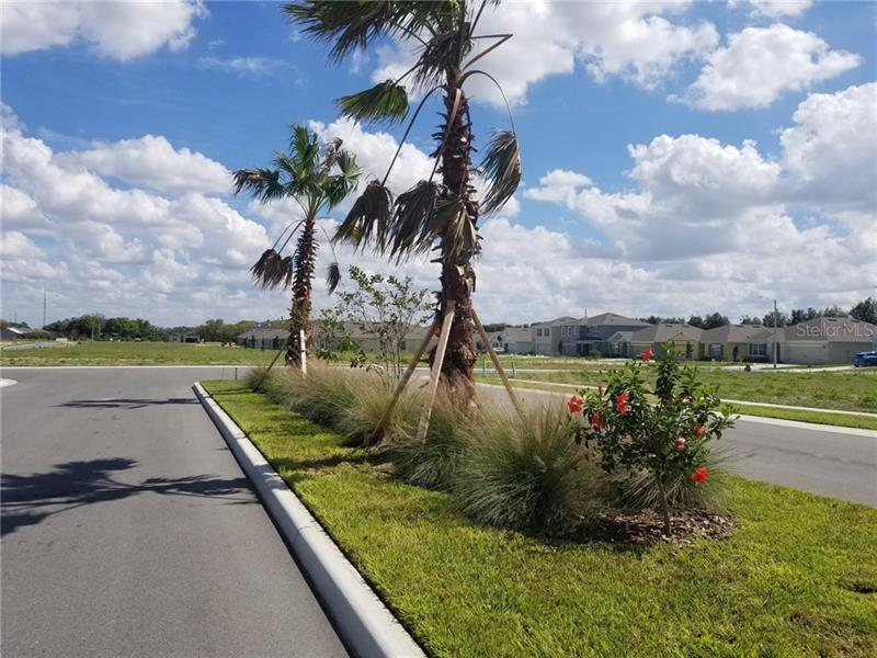 3061 COUNTRY CLUB, WINTER HAVEN, FL, 33881