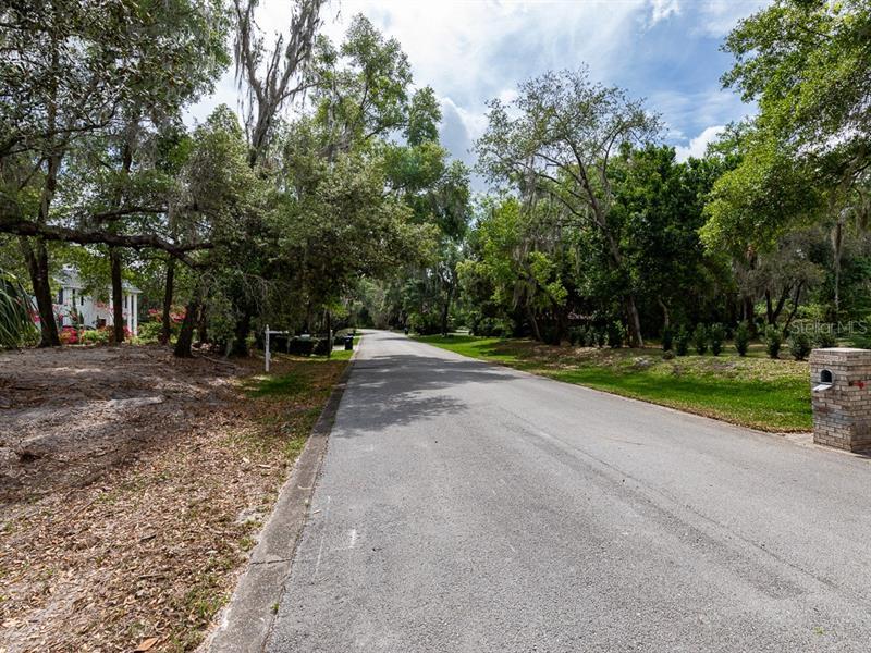 1143 ELYSIUM, MOUNT DORA, FL, 32757