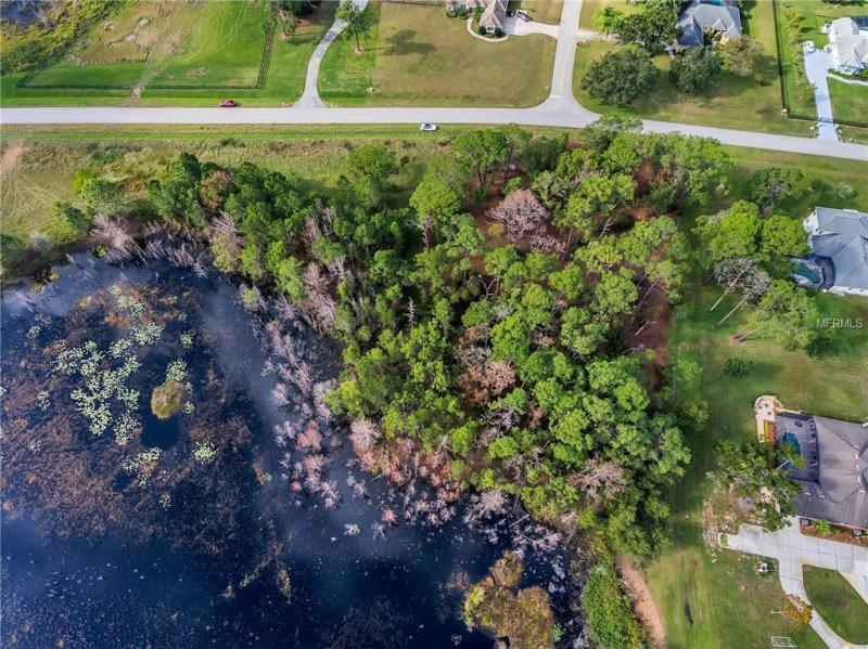 ARROWTREE, CLERMONT, FL, 34715