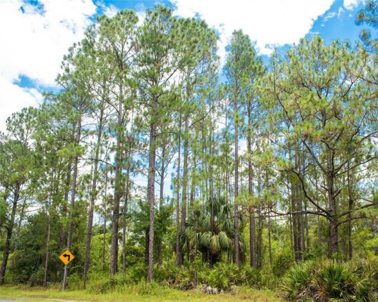 O5719904 Happy Trails Kissimmee, Real Estate  Homes, Condos, For Sale Happy Trails Properties (FL)