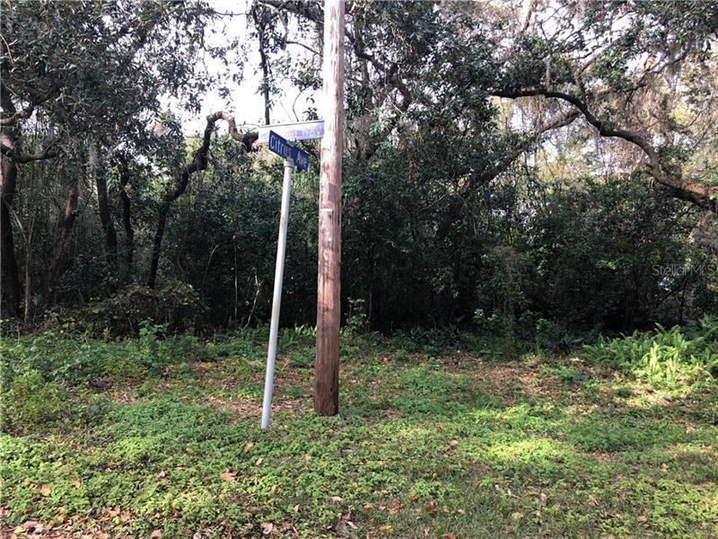 N CITRUS, HOWEY IN THE HILLS, FL, 34737