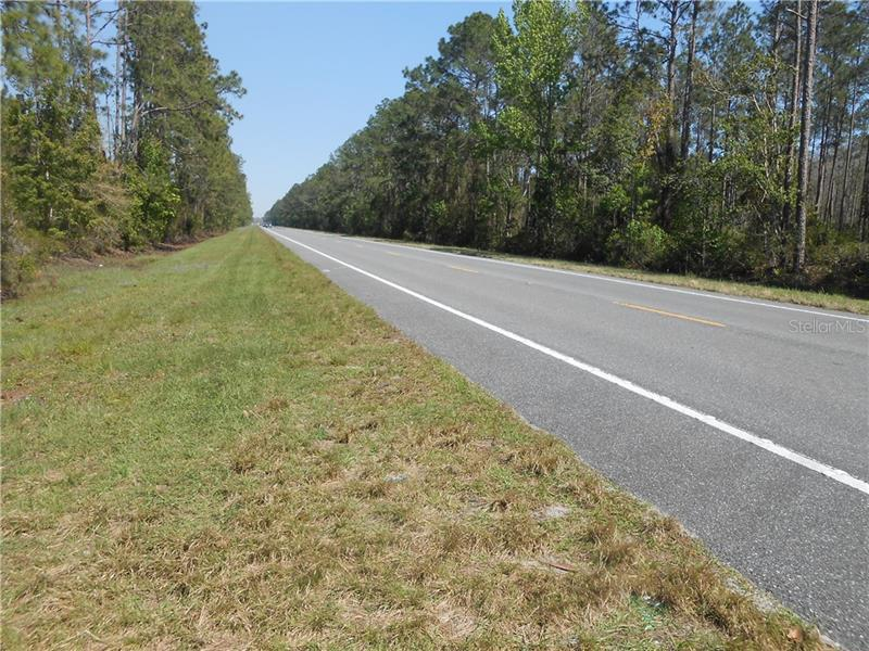 STATE ROAD 40, PIERSON, FL, 32180