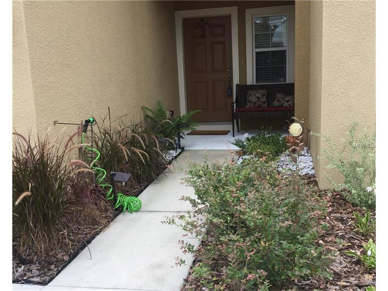 8419  PAINTED TURTLE WAY,  RIVERVIEW, FL