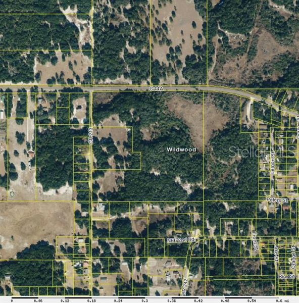 0 COUNTY ROAD 213, WILDWOOD, FL, 34785